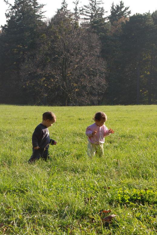 twins meadow